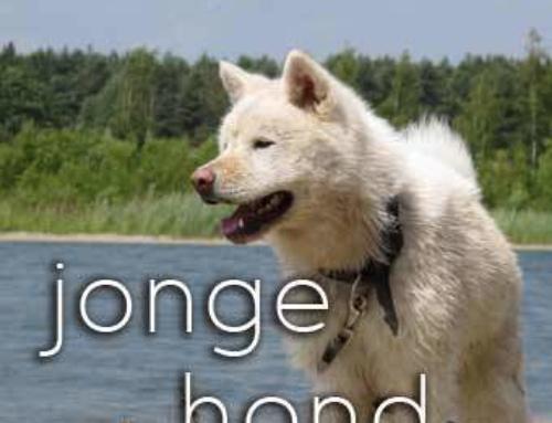 Recensie jonge hond cursus Dogtrust
